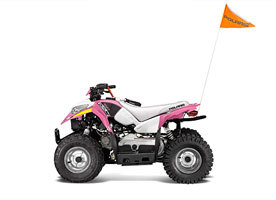Buy or Bust - 2016 Polaris OUTLAW 50