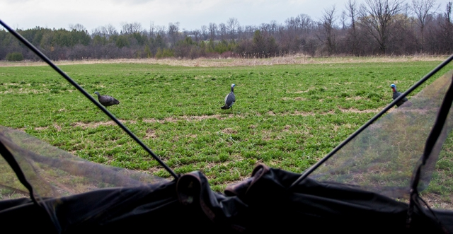Ground Blinds: Setting Up and Using Your Portable Hunting Cabin Effectively