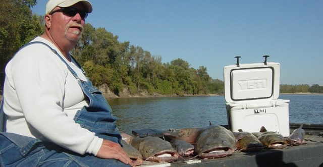 Navigating The Fall Catfishing Transition With CatDaddy
